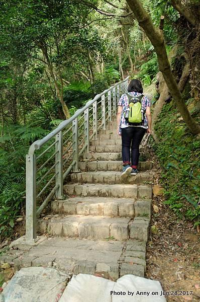翠山步道12.jpg