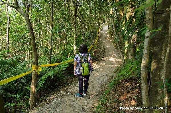 翠山步道13.jpg