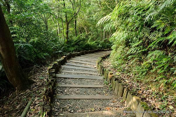 碧溪步道(小溪頭環狀步道)9.jpg