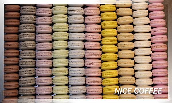 IMG_0049-十種蛋白餅.jpg