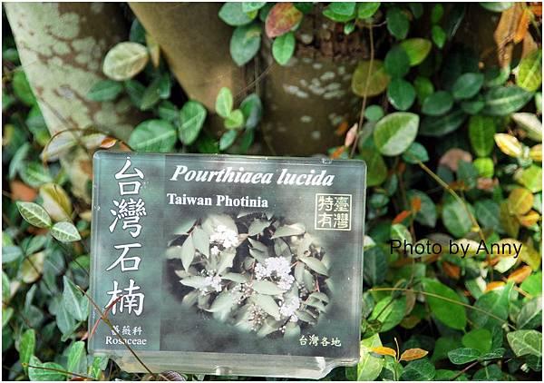 植物園12-1