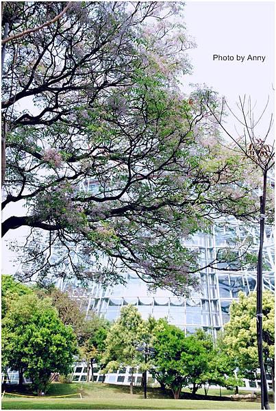 植物園14