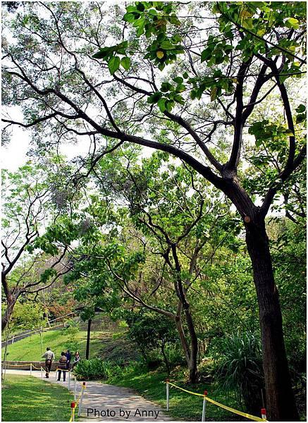 植物園17