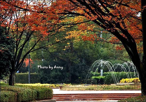 廣島城7.jpg