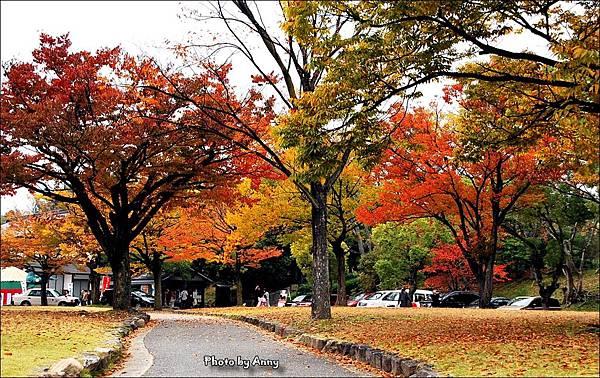 廣島城15.jpg