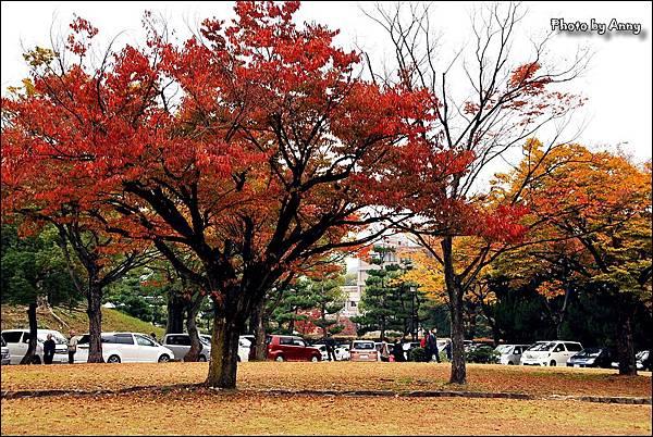 廣島城16.jpg