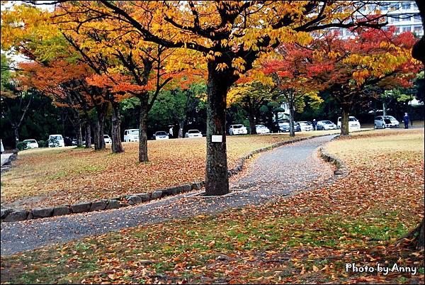 廣島城28.jpg