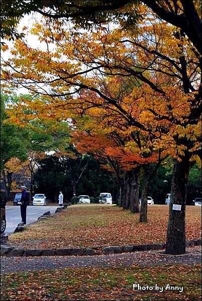 廣島城29.jpg