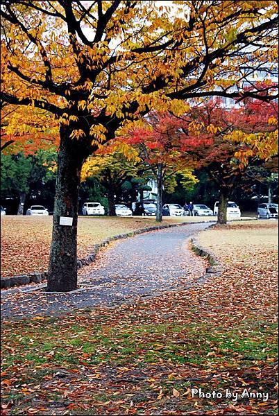 廣島城30.jpg