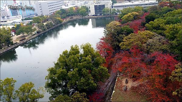 廣島城46.jpg