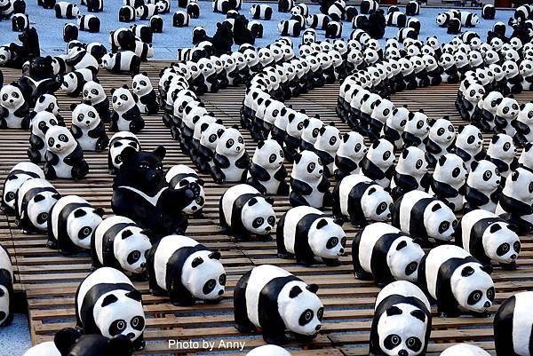 熊貓9.jpg