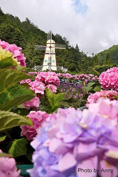 花園17.jpg
