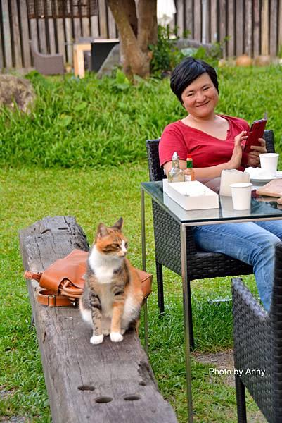 九樹cat13.jpg