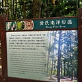 樹木園11