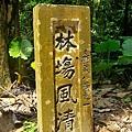 樹木園10