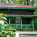 樹木園15