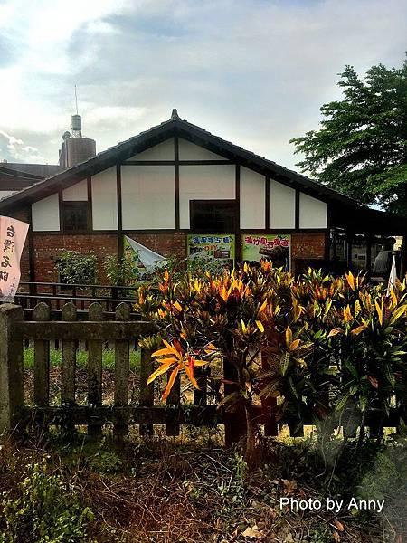 阿里山10.jpg