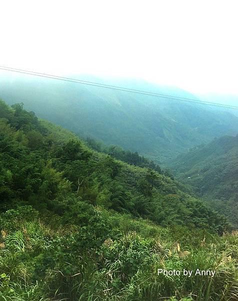 阿里山66.jpg