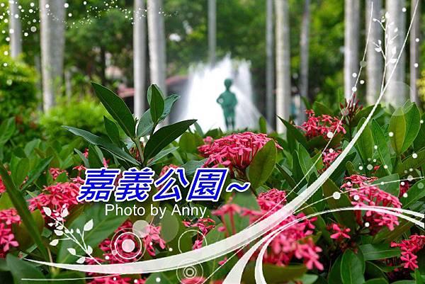 公園a1.jpg