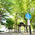 東光自行車道.jpg