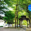 東光綠園道4.jpg