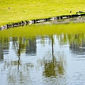 湖12.jpg