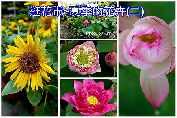 花市a2.jpg