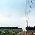 黑森林7.jpg