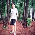 黑森林23-1.jpg