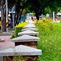 竹北53.jpg