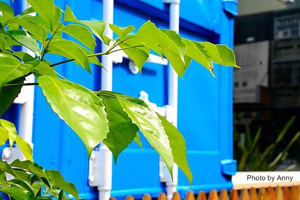 藍12.jpg