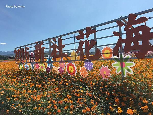 花海1.jpg