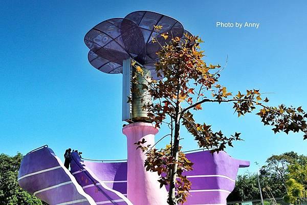紫24.jpg