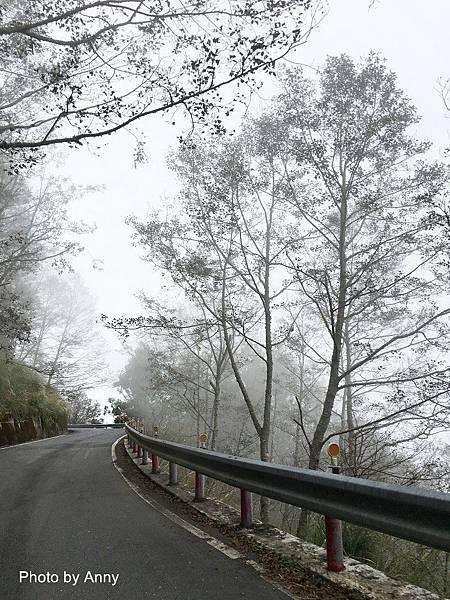 翠峰湖6.jpg