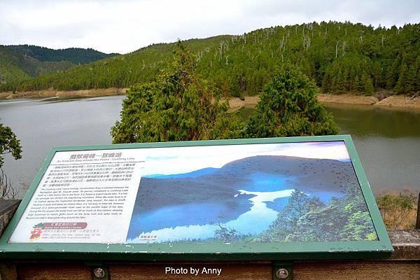 翠峰湖22.jpg