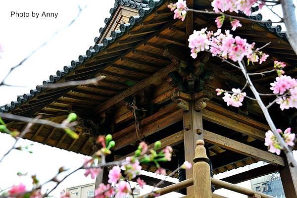 西本願寺33.jpg