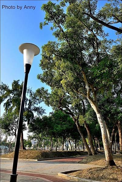 坪林公園4.jpg