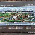 坪林公園12.jpg