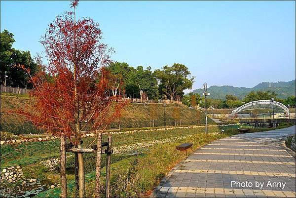 坪林公園39.jpg