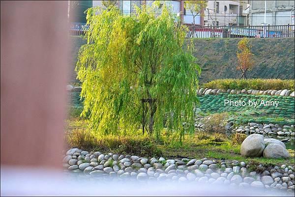 坪林公園45.jpg