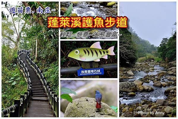 護魚步道a1.jpg