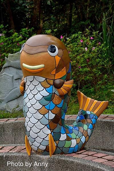 護魚步道3.jpg