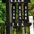 護魚步道27.jpg