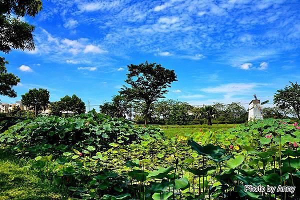 心田花園9.jpg