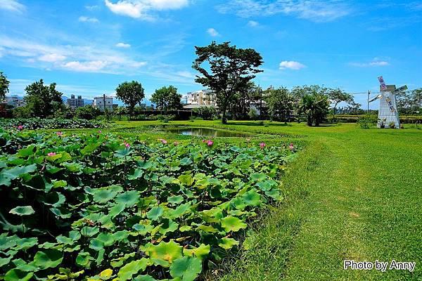心田花園45.jpg