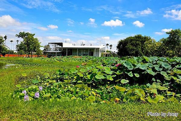 心田花園53.jpg