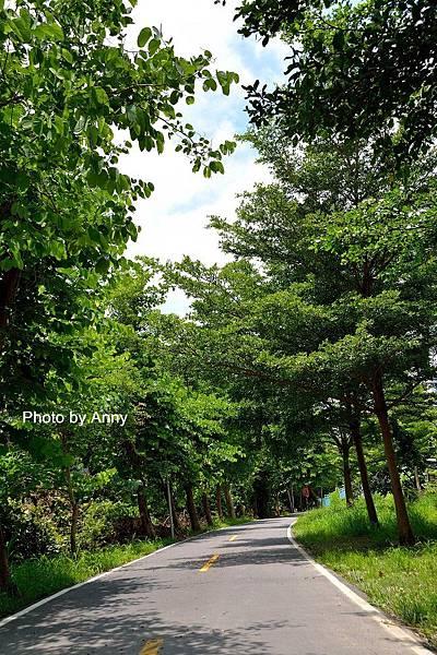潭雅神綠園道15.jpg