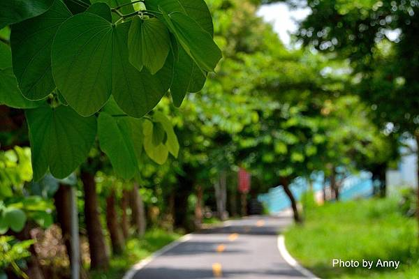 潭雅神綠園道17.jpg