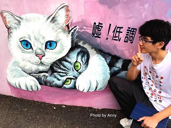 菁埔貓世界45.jpg