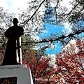 福壽山楓2.jpg